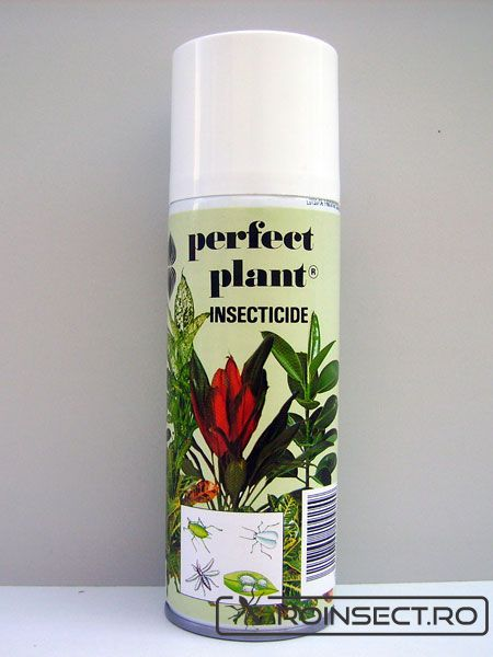 Spray Insecticid pentru plante Perfect Plant 600ml